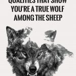 12-remarkable-qualities-that-show-youre-a-true-wolf-among-the-sheep