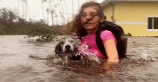 Bahamas woman brings nearly 100 dogs into her home