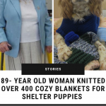 maisie-donates-knitted-blankets-shelter-dogs