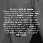 I Like To Be Nice To Rude People And People Who Don't Like Me