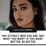 you-attract-same-energy